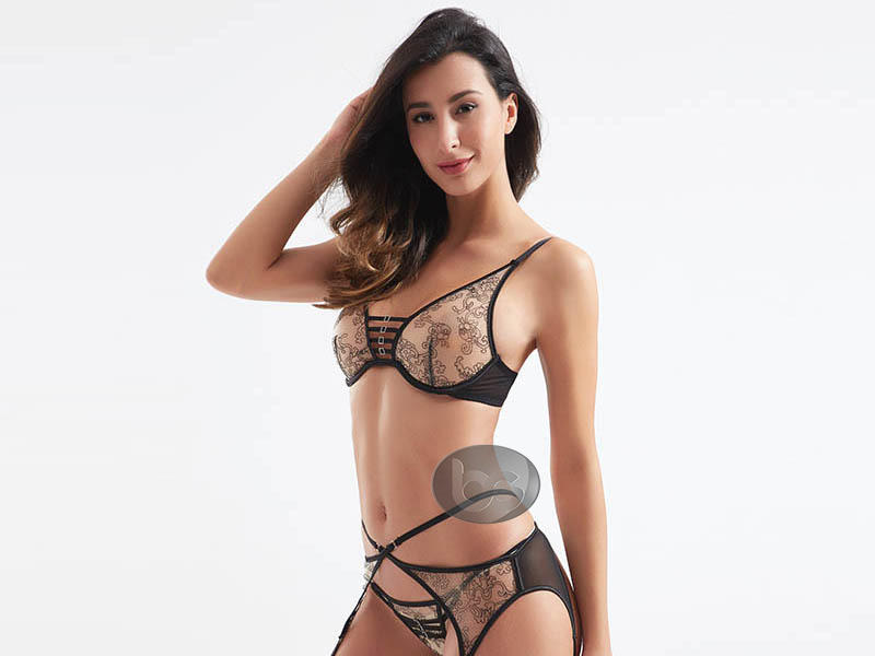 Fashionable transparent mesh design sexy bra and panty sets BSQ181-3