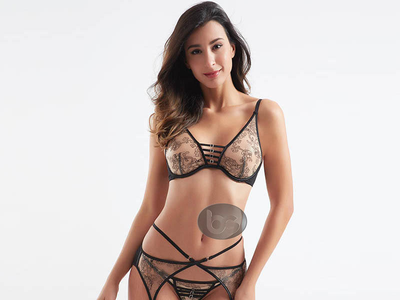 Fashionable transparent mesh design sexy bra and panty sets BSQ181-2